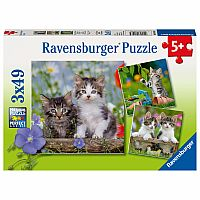 Ravensburger 3 - 49 Piece Puzzles Tigers Kittens